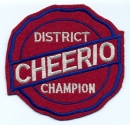 District Champion (felt)